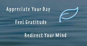 Graphic-- appreciate your day, feel gratitude, redirect your mind